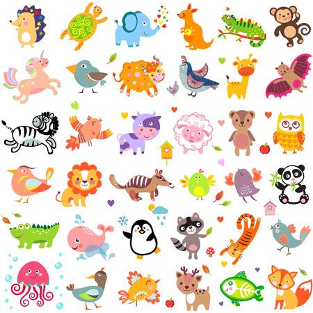 Ilustración vectorial de animales lindos y aves: Yak, codorniz, jirafa, palo de vampiro, vaca, oveja, oso, búho, mapache, erizo, ballena, panda, león, ciervos, pescados de rayos x, zorro, paloma, cuervo, pollo, pato, la codorniz, el cocodrilo, el tigre, tortuga, canguro, elefante, mono, i