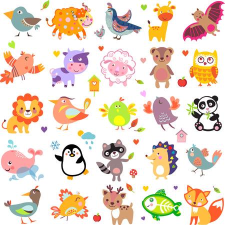 állatok: Vektoros illusztráció aranyos állatok és madarak: Jak, fürj, zsiráf, vérszopó denevér, tehén, juh, medve, bagoly, mosómedve, sün, bálna, panda, oroszlán, szarvas, röntgen hal, róka, galamb, varjú, csirke, kacsa, fürj
