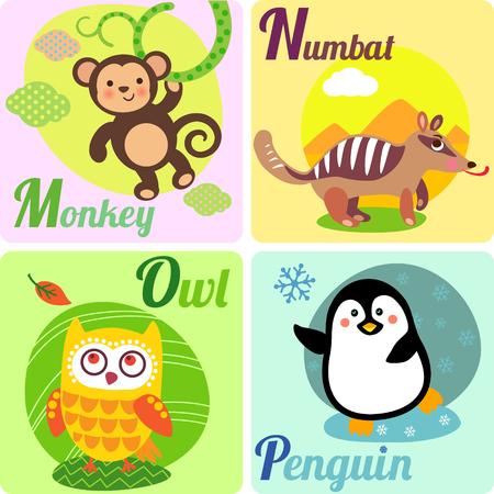mono caricatura: Alfabeto zoológico lindo en el vector. M, N, O, cartas Pl. Animales divertidos para el libro de ABC. Mono, numbat, búho, pingüino.
