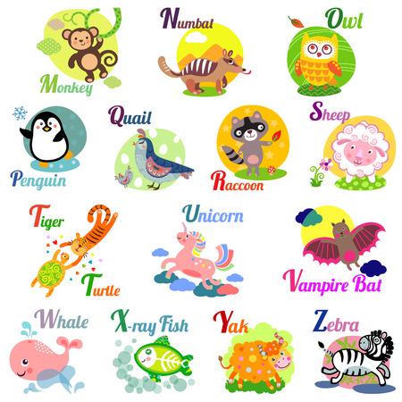 alfabeto con animales: Alfabeto animal lindo para el libro de ABC. Ilustraci�n vectorial de los animales de dibujos animados. M, N, O, P, Q, R, s, t, u, v, w, x, y, z cartas