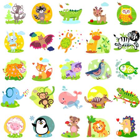 állatok: Vektoros illusztráció aranyos állatok és madarak: farkas, mosómedve, aligátor, szarvas, bagoly, nyúl, denevér, teknős, zsiráf, zebra, jak, róka, tehén, fürj, madár, elefánt, majom, bálna, numbat, leguánok, juh, pingvin, medve, oroszlán, sün, X-Ray hal, nyuszi, nyúl