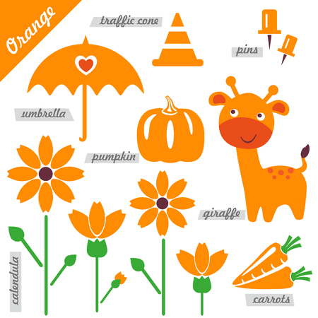 calendula flower: set of images as examples of Orange color, for kids, educational purposes, illustrations, page of color book, pumpkin, giraffe, umbrella, pins, traffic cone, carrots, calendula, flower