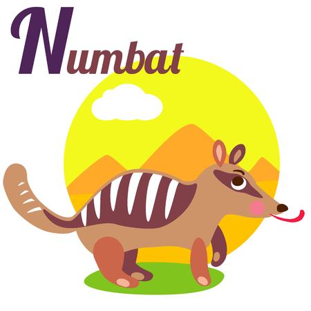 alfabeto con animales: alfabeto animal linda por un libro del abecedario. Ilustración vectorial de dibujos animados numbat. letra N para el Numbat