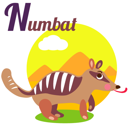 latin alphabet: Cute animal alphabet for ABC book. Vector illustration of cartoon numbat. N letter for the Numbat