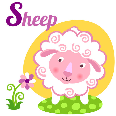 animal feed: Cute animal alphabet for ABC book. Vector illustration of cartoon sheep. S letter for the Sheep Illustration