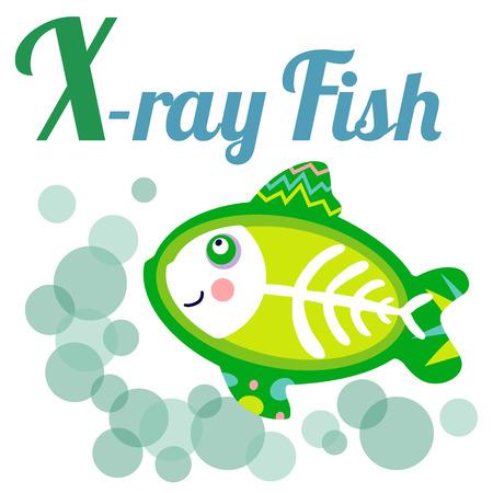 alfabeto con animales: alfabeto animal linda por un libro del abecedario. ilustración vectorial de dibujos de peces de rayos x. letra X para los peces de rayos X.