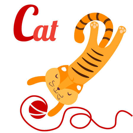A vector illustration of cute cat with ball of yarn. Cat for C letter. English alphabet