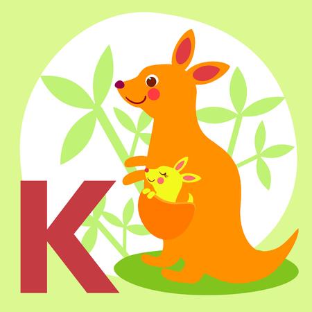 animal alphabet: Cute animal alphabet for ABC book. Vector illustration of cartoon animals. Cute cartoon Kangaroo for K letter