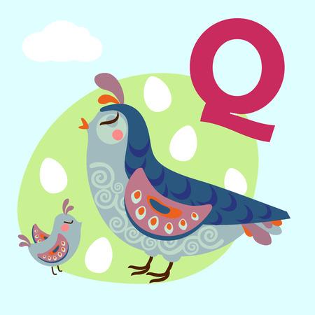 Cute animal alphabet for ABC book. Vector illustration of cartoon animals. Cute cartoon Quail for Q letter