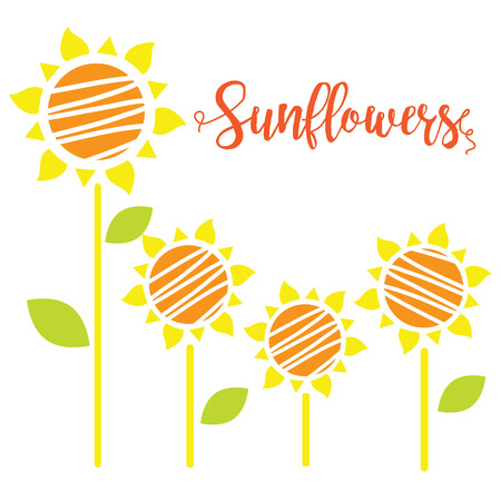 illustration of sunflowers. Sunflowers Isolated on white background. 일러스트