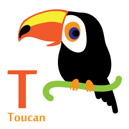 Toucan for T letter. An illustration of a cute toucan in format. Nice toucan image for kids education and fun in nursery and schools, and decoration purposes. English alphabet. Zoo abc.