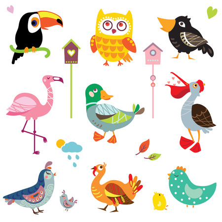 wildfowl: A set of cute bird illustrations, various types of wildfowl and poultry: toucan, owl, flamingo, duck, pelican, quail, crow, turkey, chicken. Birds collection Illustration