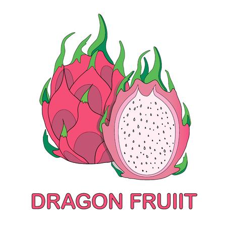 Dragon fruit Exotic fruit. Ilustração