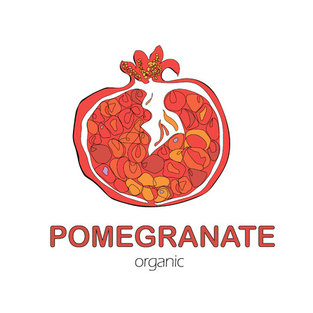 Hand Drawn organic Pomegranate fruit on White