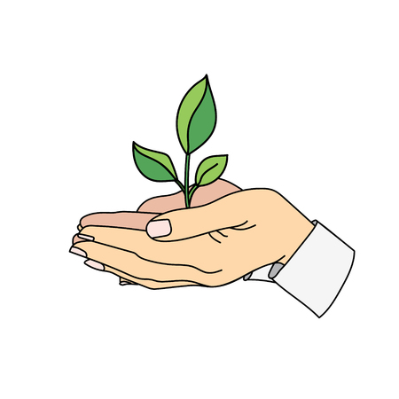 Business growth symbol. Hands holding a sprout.