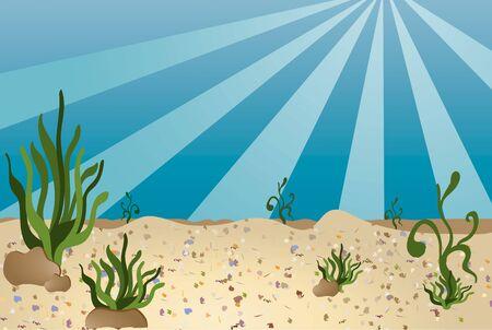 Sea bottom illustration in a cartoon like style