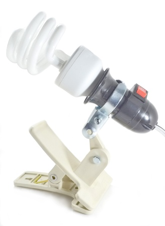 Power-saving bulbs photo