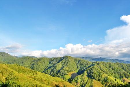 Mountain landscape natural composition photo
