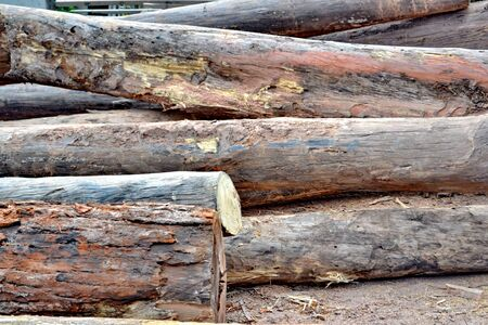 workable: Wood preparation Industries that have an impact on the environment. Stock Photo