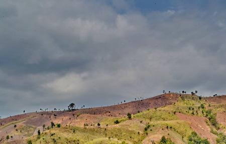 タイの熱帯雨林の破壊