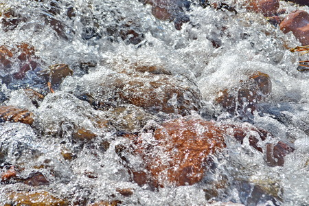 warm water fish: Table Rock Mountain Stream Stock Photo
