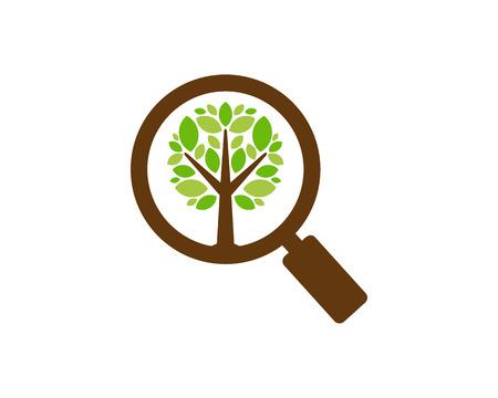 Looking Tree Logo Icon Design