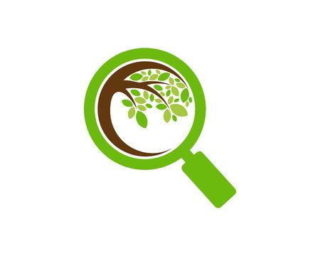 Find Tree Logo Icon Design