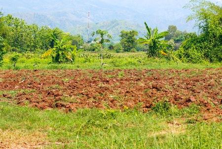 Preparing soil for plant Stok Fotoğraf