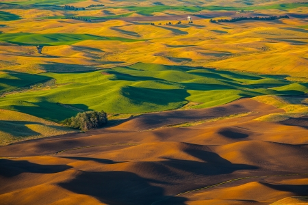 palouse: Wheat land at sunset, Palouse, WA Stock Photo