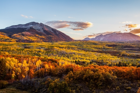 kepler: Forest of fall color tree at sunset from Kepler pass, Colorado