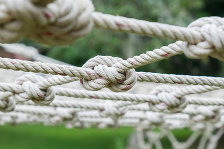 tether: Many Coil of rope with nature background. Stock Photo