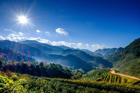 Sun Flare on Blue Sky in Mountain
