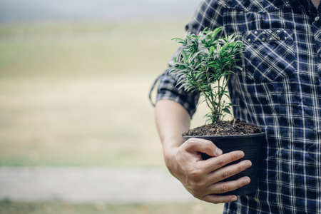 Young man was holding a seedling to prepare to plant a tree, Preserving or loving the environment or maintaining the soil, Planting trees to add oxygen to the air, Save world save life concept.