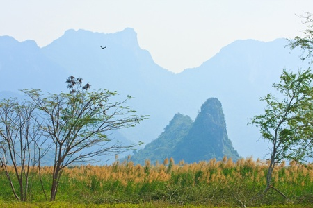 Wetlands or Swamp and Limestone Mount, Thailand