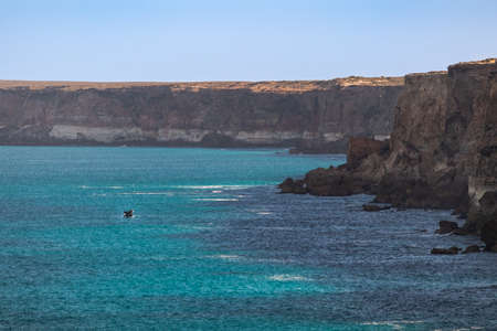 Southern right whale breaching in front of a cliff. Young individual alone. Wide angle photo, whale with landscape. Turquoise ocean. Great Bight, Head of Bight, Nullarbor, South Australia