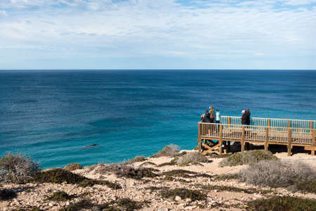 Group of people watching whales migration from an observation platform at the shore. Whale close to the cliff. Nature observation. Head of Bight, Nullarbor, South Australia Stock fotó