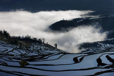 yuan yang: Terraces in Yunnan