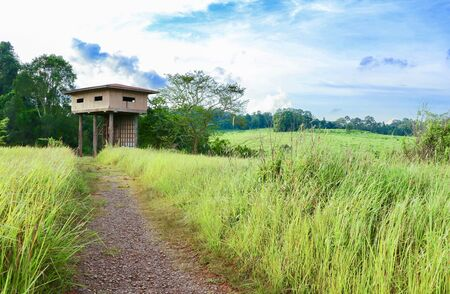 Wildlife observation tower in Khao yai national park, Thailand Stock Photo - 134231985