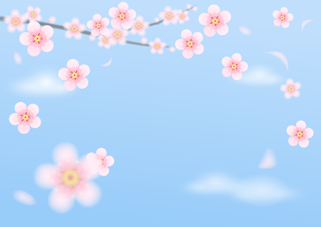 Pink plum flowers float on Blue sky. Vector illustration nature 3D style for Chinese New Year holiday, celebration, wedding card, web, printing. 일러스트