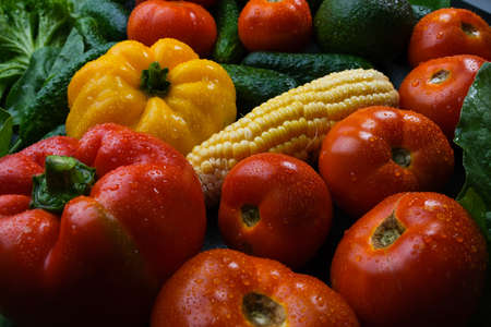 Multicolored fresh vegetables: zucchini, tomatoes, cucumbers, bell peppers, corn, with water droplets.