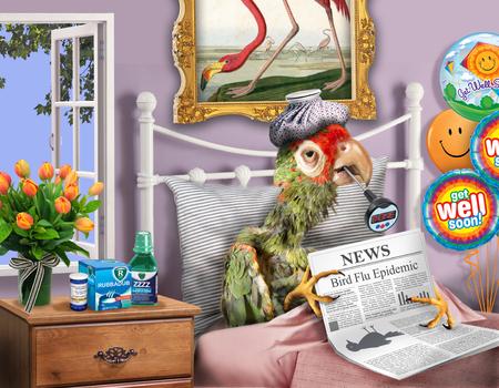 독감이있는 침대에서 새의 상상의 이미지