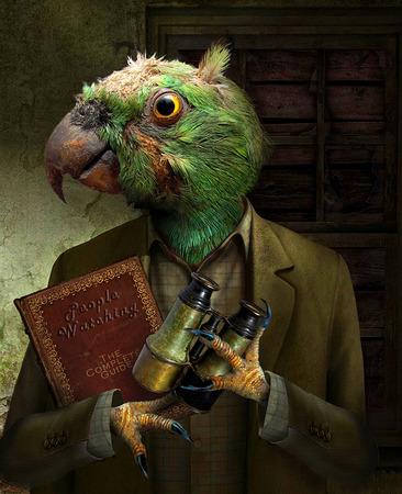 Parrot People Watcher