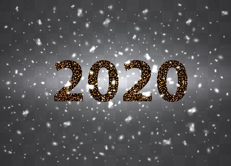 2020. Snowflakes, snow background. Christmas snow for the new year. Vector illustration.