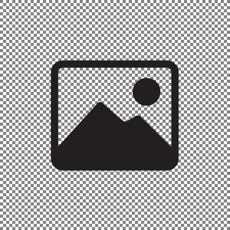 photograph vector icon on a transparent background Stock Illustratie