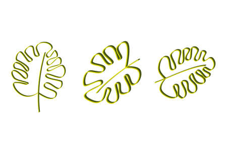pattern with tropical leaves on white background