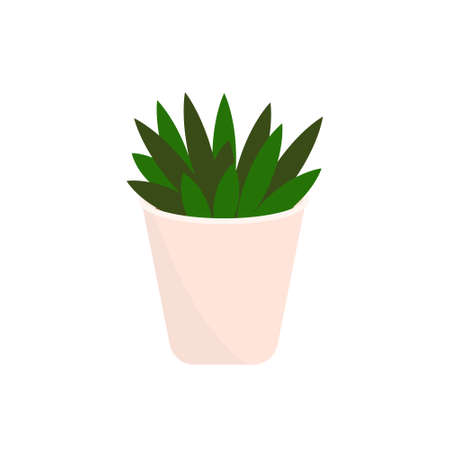 Decorative houseplants. Plants and nature homemade flowers in pot interior decoration in flat cartoon style. Stock Illustratie