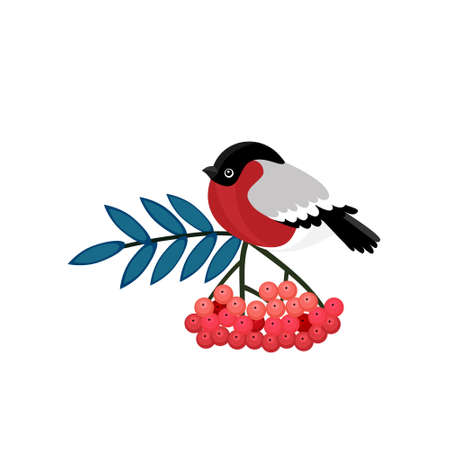 Bullfinch cartoon winter bird sitting on branch of viburnum tree with red berries and green leaf. Vector Eurasian bullfinch with gray and red plumage, wild bird mascot design Vettoriali