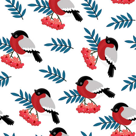 Seamless pattern with red rowan berries and bullfinches. Vector illustration on white background.  イラスト・ベクター素材