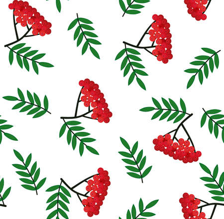 Seamless pattern with bunches of rowan berries on a white background. Vector sketch. Use for packaging, fabrics, backgrounds, web ads, design, napkins. Vettoriali