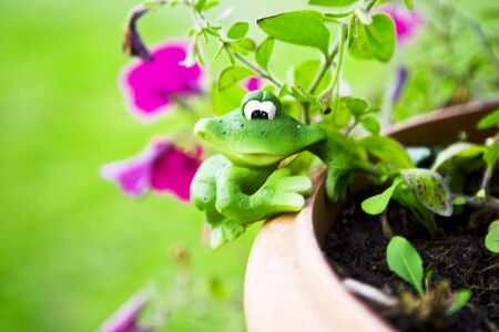 Small green toy frog on flowerpot with violet flowers 版權商用圖片